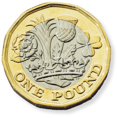 Image of a pound coin